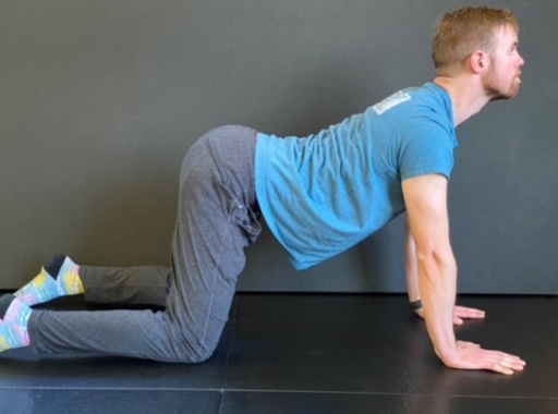 A Dentist's Guide to Body Mobility 6