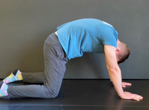 A Dentist's Guide to Body Mobility 7
