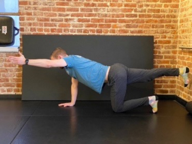 A Dentist's Guide to Body Mobility 13