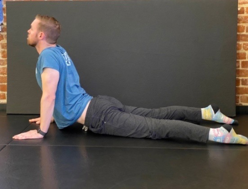 A Dentist's Guide to Body Mobility 17