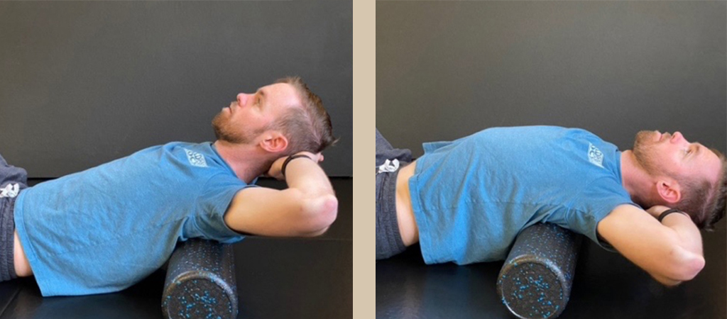 A Dentist's Guide to Body Mobility 1